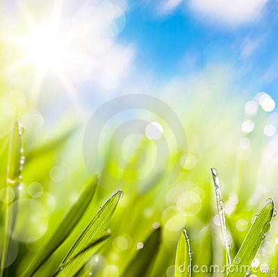 Abstracts of natural spring green background Stock Photo