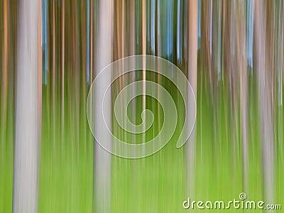 Abstrakcjonistyczni drzewa
