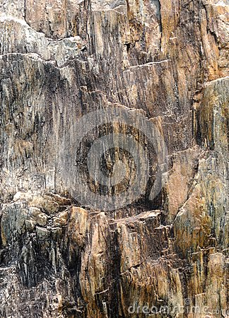 Abstraktes Bild von der versteinerten hölzernen Oberfläche