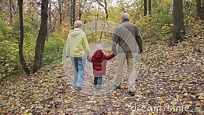 Abuelos con el nieto en parque del otoño almacen de metraje de vídeo