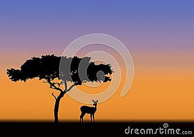 Acacia and impala silhouette