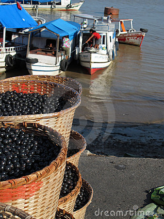 Free Acai In Baskets Royalty Free Stock Images - 16087059