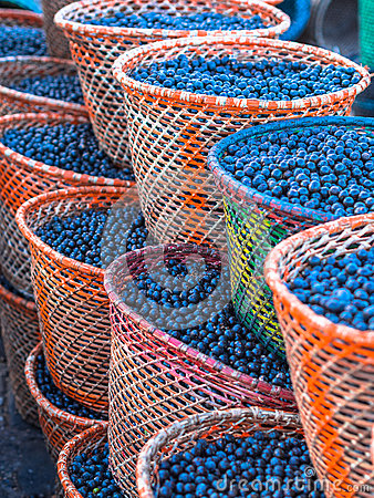 Free Acai In Baskets Stock Image - 44545961