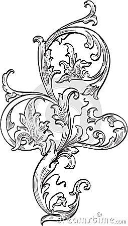Acanthuce leaf