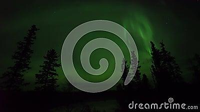 Acción en vivo en tiempo real, no tiempo en tiempo real Aurora borealis o luces del norte observadas en Yellowk almacen de video