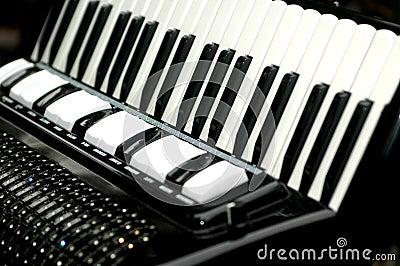 Accordion, musical instrument