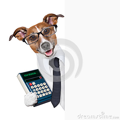 Free Accountant Dog Royalty Free Stock Images - 31335249