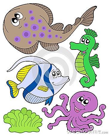 Accumulazione sveglia 3 degli animali marini fotografia - Clip art animali marini ...