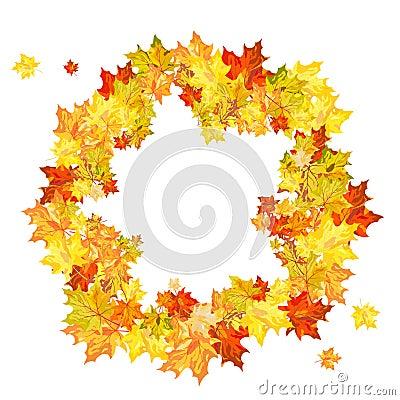 Acero di autunno
