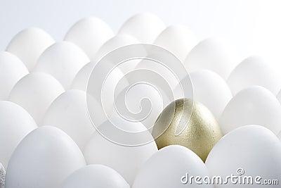 Achtergrond van eieren