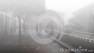 Acopio en un día de niebla metrajes