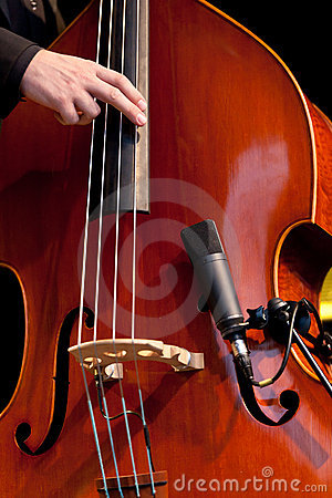 Free Acoustic Double Bass Player Royalty Free Stock Images - 21977489