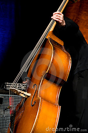 Acoustic double bass player