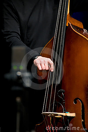 Free Acoustic Double Bass Player Stock Photography - 5054402