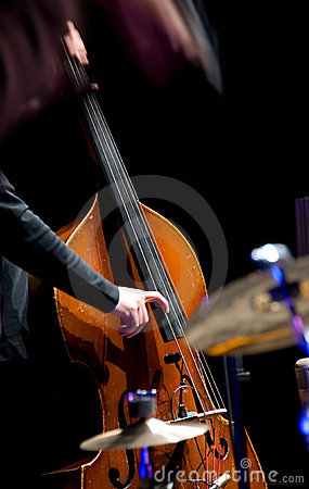 Free Acoustic Double Bass Player Royalty Free Stock Photos - 5054428