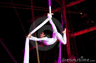 Acrobat Editorial Image