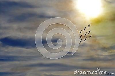 Acrobatic aircraft