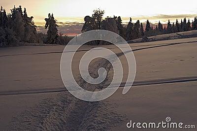 Across the snow field