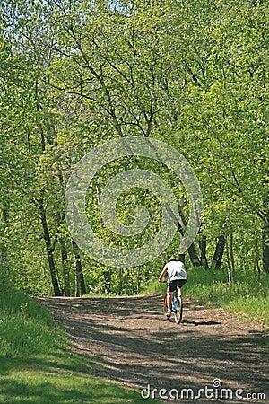 Active Man on Bike