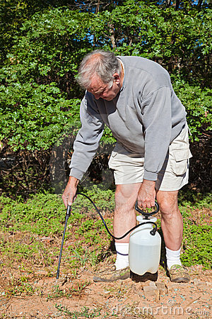 Active Senior Spraying Weeds