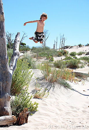 Active young boy leaping out of a tree