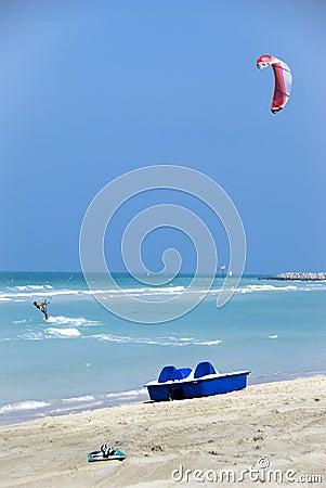 Activity along the shore