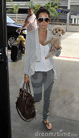 Actress Ashley Tisdale with puppy at LAX Editorial Stock Photo