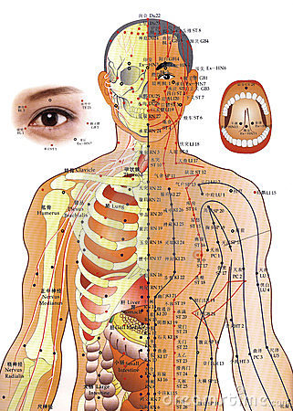 Acupuncture Chart - Chinese Medicine Editorial Photography