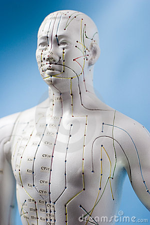 Free Acupuncture Figure Royalty Free Stock Image - 1660596