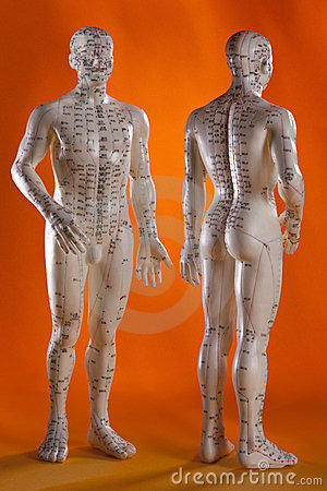 Free Acupuncture Model - Alternative Medicine - China Royalty Free Stock Photos - 23644518