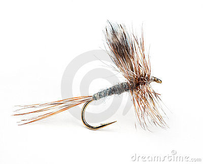 The Adams Dry Fly