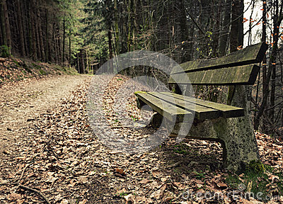 Adandoned wooden bench