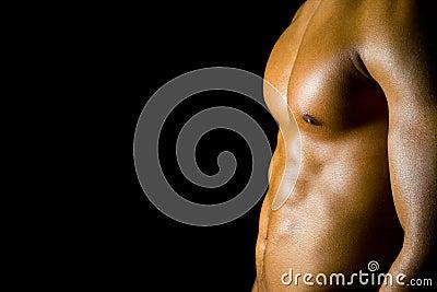 Adbominal muscles