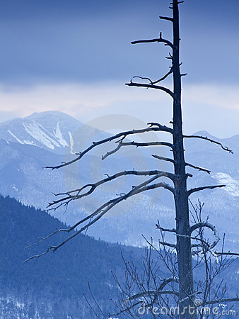 Adirondack Mountains in Winter