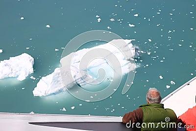 Admiring icebergs Editorial Photo