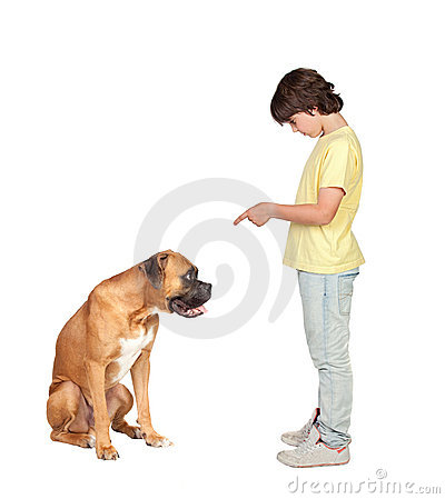 Free Adorable Boy And His Dog Stock Photo - 14858790