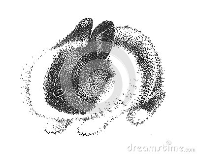 Adorable Cute Bunny Rabbit Drawing Stock Photo Image
