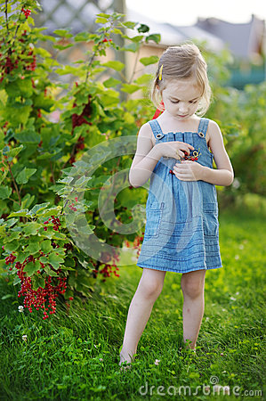 Free Adorable Little Girl With Red Currants Royalty Free Stock Photos - 26138938