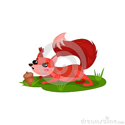 Free Adorable Red Squirrel Found Acorn In Grass. Forest Rodent With Shiny Eyes And Pink Cheeks. Flat Vector Of Small Animal Stock Photos - 118848293