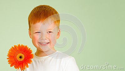 Adorable redheaded boy with orange African daisy