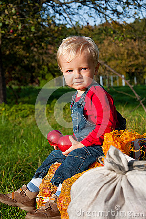 Adorable toddler eating red apples