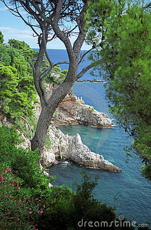 Free Adriatic Coast In Dubrovnik Stock Photography - 2085752