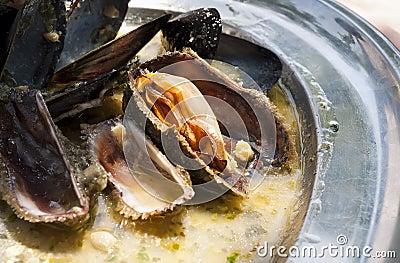 Adriatic mussels