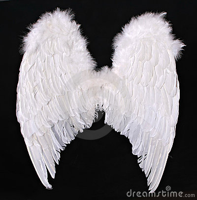 Free Adult Angel Wings Photography Prop Royalty Free Stock Photo - 12909265