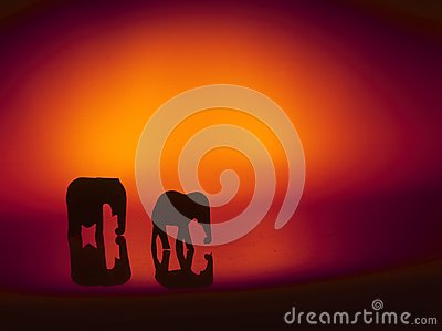 Adult Elephant Exhibit