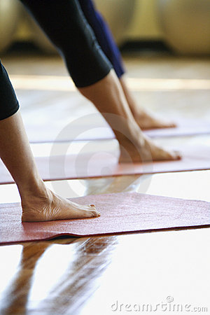 Free Adult Females In Yoga Class. Royalty Free Stock Photography - 2044727