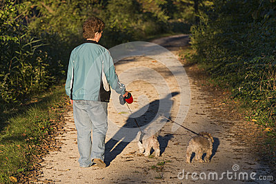 Adult Woman Walking Her Puppies At Sunset