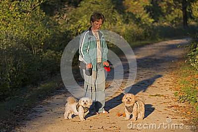 Adult Woman Walking Her Two Puppie At Sunset