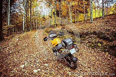 Adventure motorbike in forest