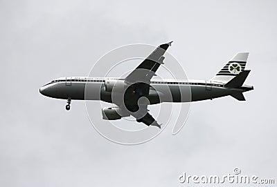 Aer Lingus  Airbus A320 Editorial Photo